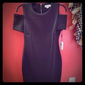 Calvin Klein black fitted dress.